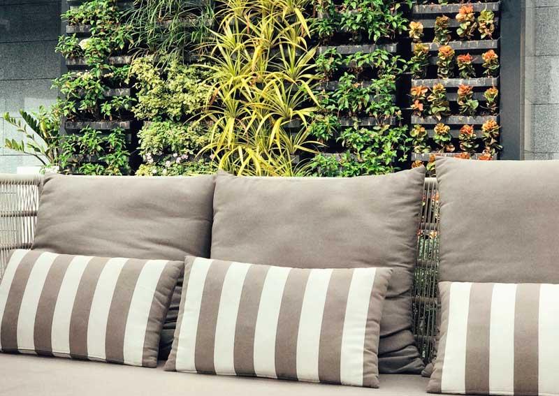 jardines verticales realizados con plantas medicinales
