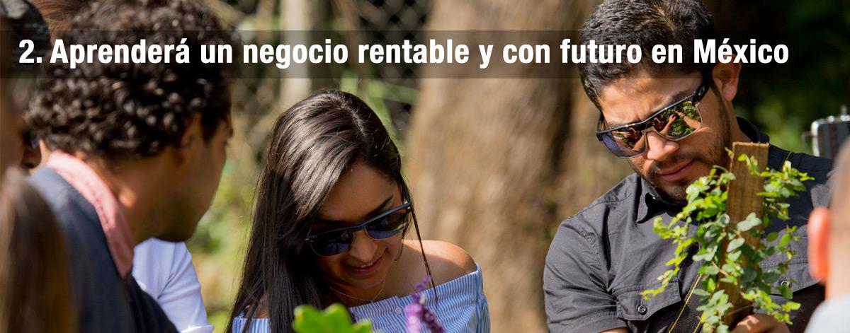 Aprenderá un negocio rentable y con futuro en México