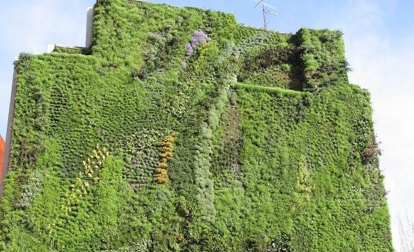 Arquitectura sostenible jardín vertical
