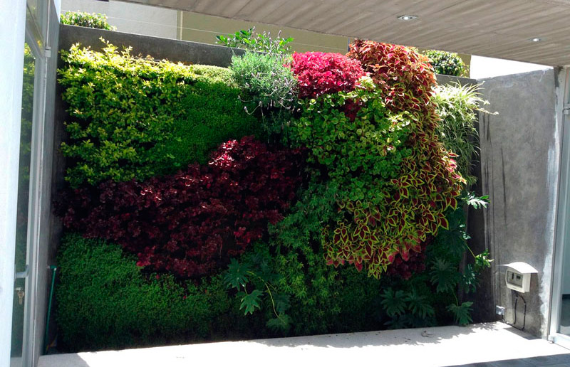 Jardín vertical de alumno de Paisajismo Urbano que combate la contaminación en México