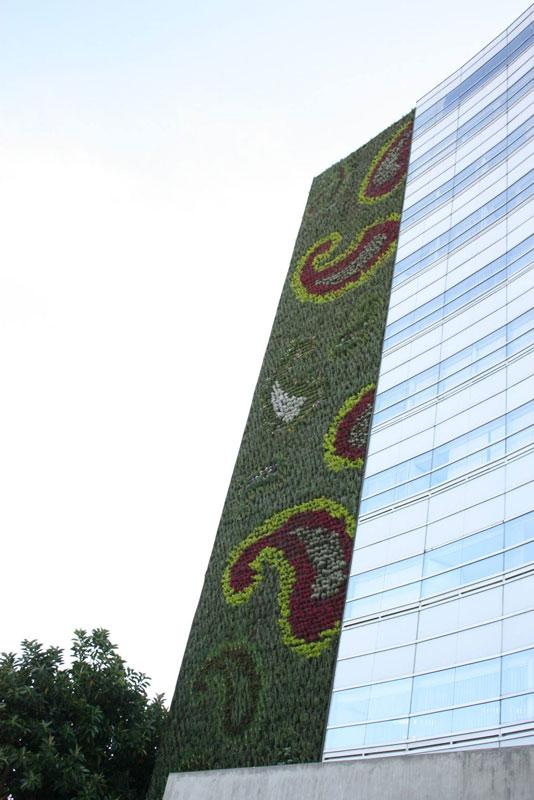 Fachada vegetal de alumno de Paisajismo Urbano que combate la contaminación en México