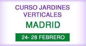 Curso profesional de jardines verticales en Madrid