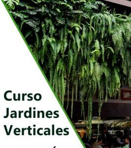 Curso profesional de jardinería vertical en Perú. Formación con el mejor sistema constructivo del mercado.