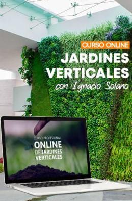 Curso online de jardines verticales con Ignacio Solano.