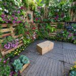 plantas para un jardín vertical